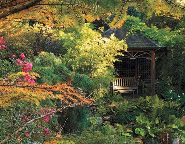 SO08 Garden.jpg