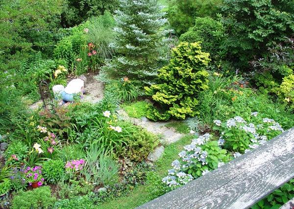 senior garden.jpg