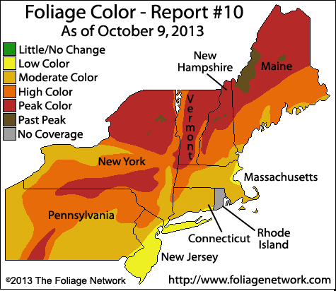 Foliage report.png