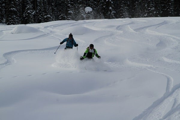 purcell-pow-skiers.JPG