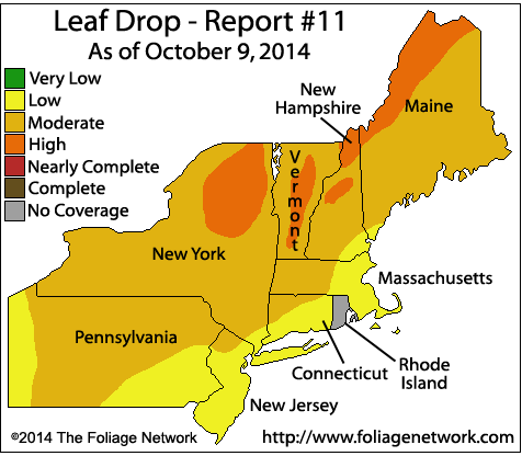 leaf drop 101114.png