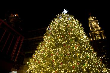 the faneuil hall christmas tree lights up holiday nights starting saturday bostoncom