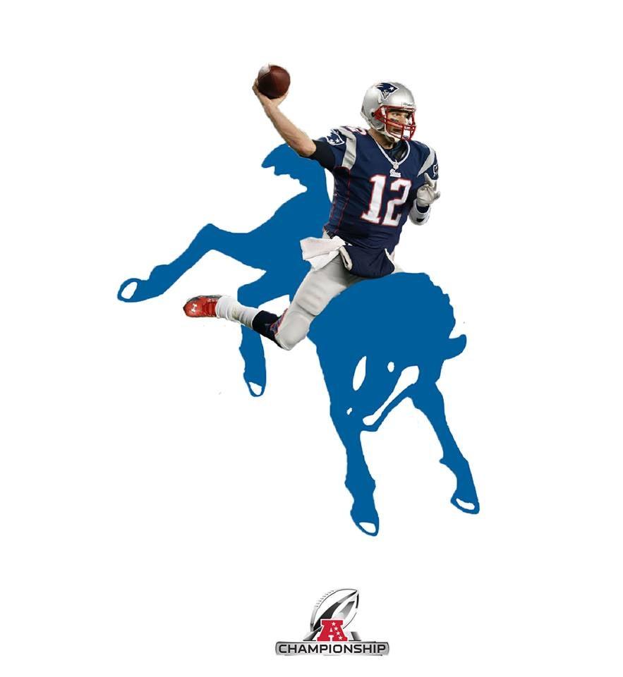 Brady_colt.jpg