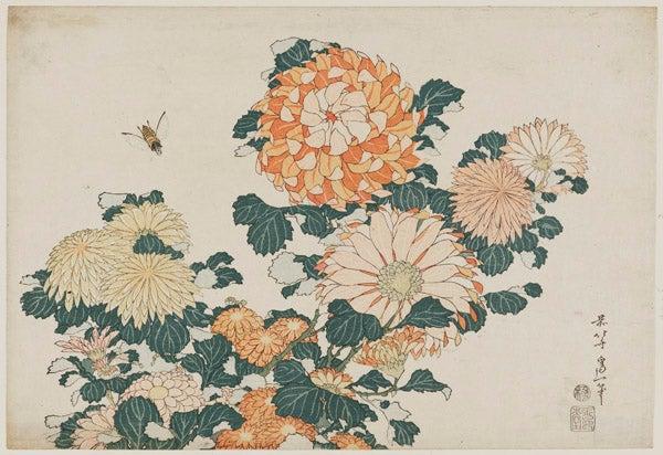 08. Chrysanthemums and Horsefly_0.jpg