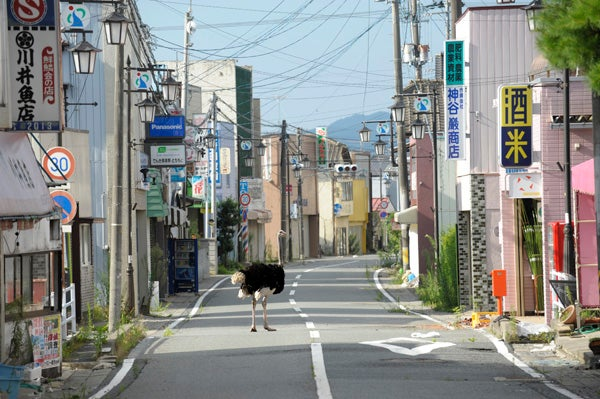 17. Yasusuke Ota.jpg