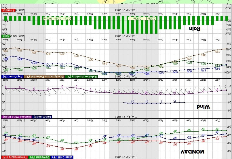bar graph monday race 413.jpg
