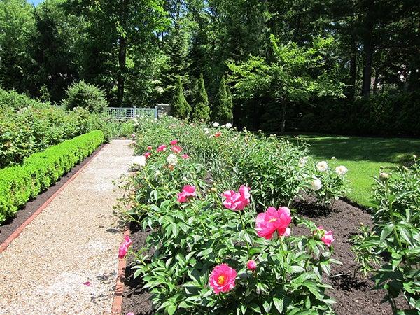 GardenClubblog.jpg