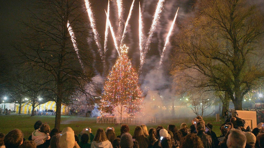 - The Boston Common Christmas Tree Will Be Lit December 3 Boston.com