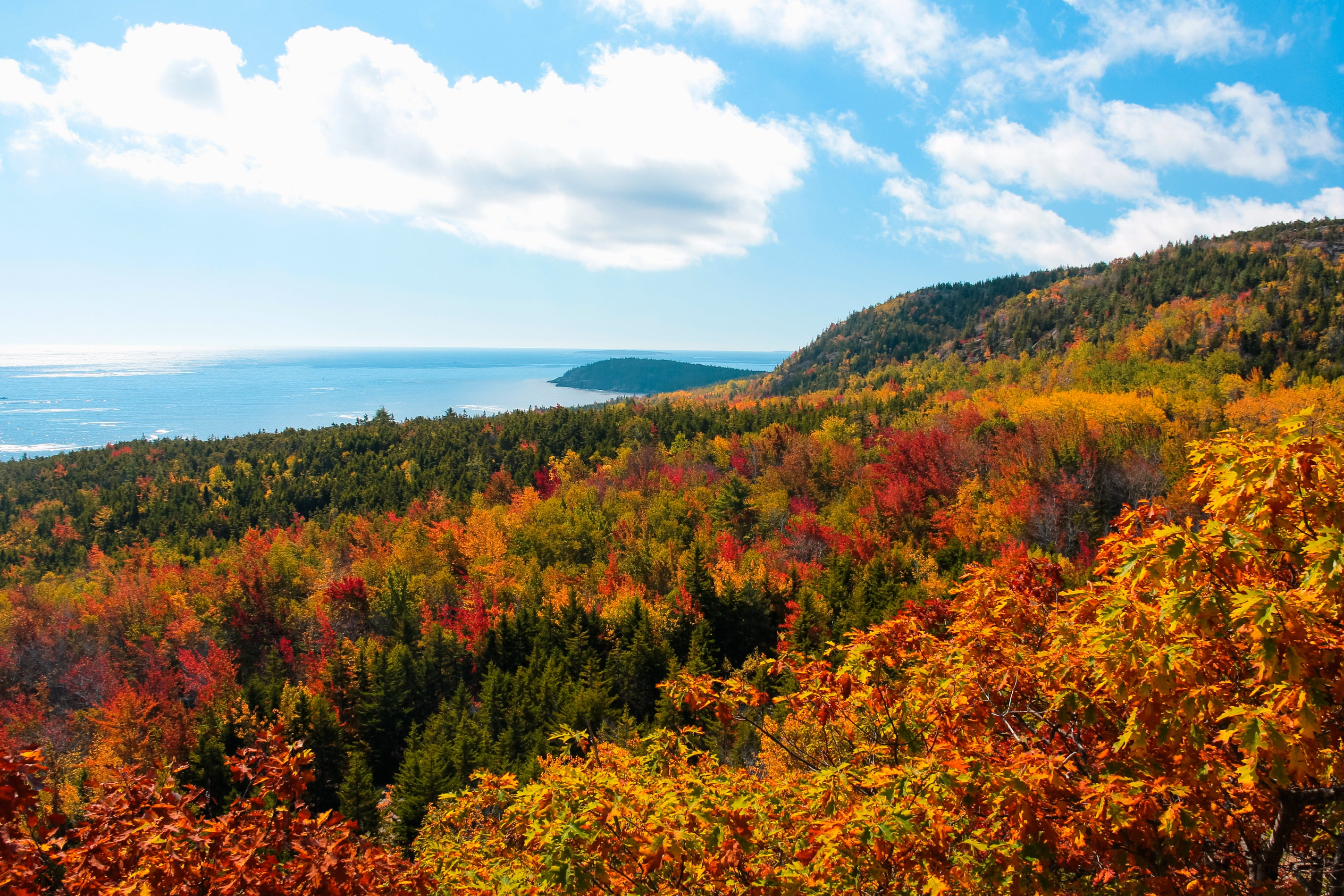 Acadia National Park has some of the best fall foliage viewing in New England. Located right near Bar Harbor, Acadia is one of the most popular national parks in the country, attracting visitors year round.