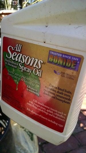 horicultural oil.jpg