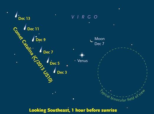 comet cateline and venus.jpg