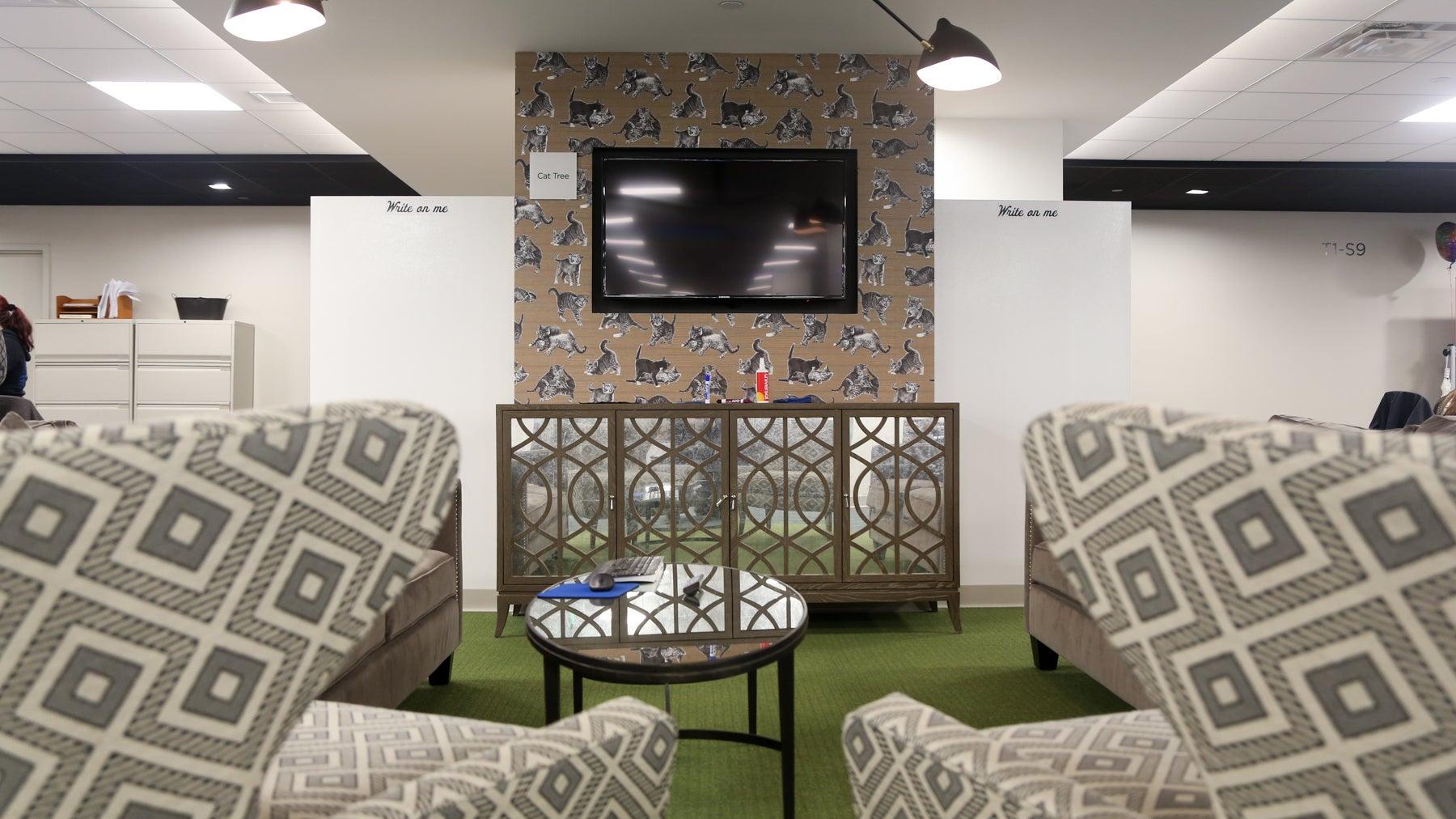 "This room is called ""Cat Tree"" in Wayfair's headquarters."