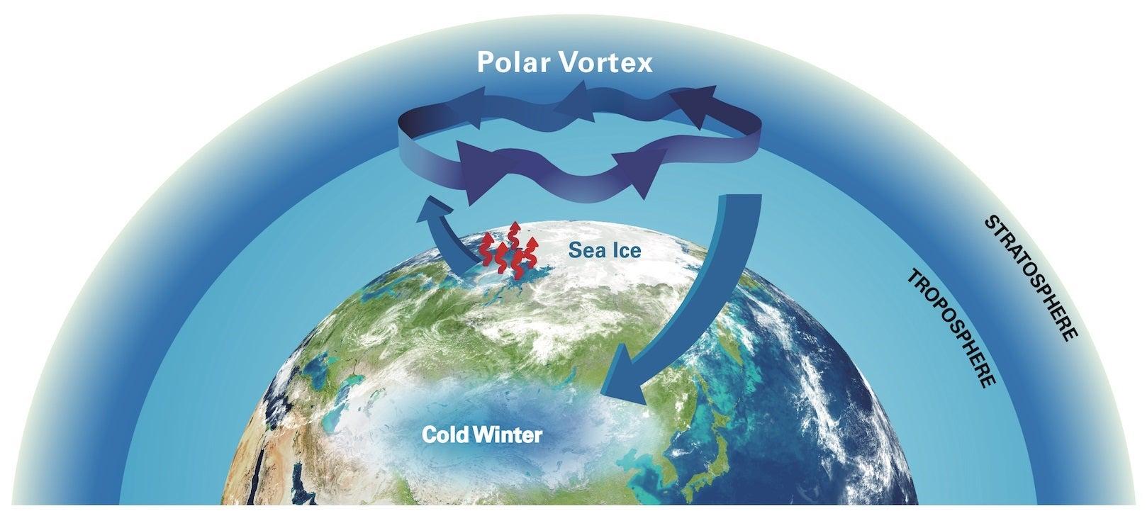 polar vortexfds 13.jpg