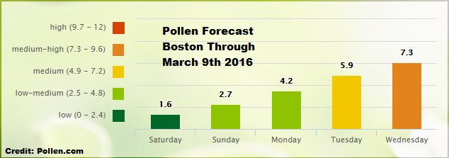 pollen coundt2.png