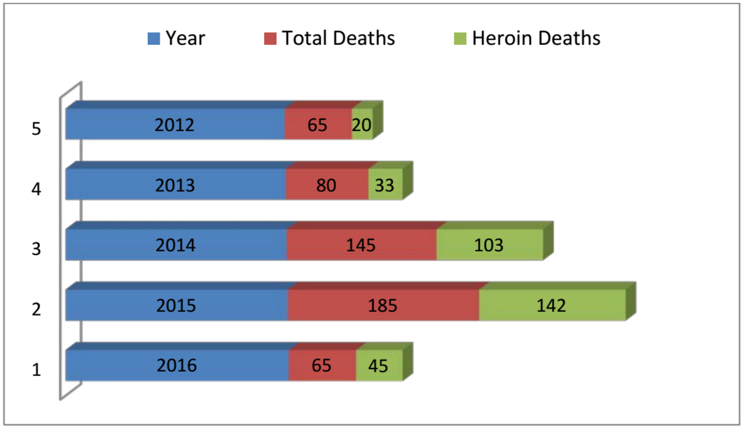 Drug overdose deaths in Middlesex County from 2012-present.