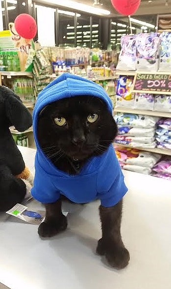 Franklin poses in a hoodie.