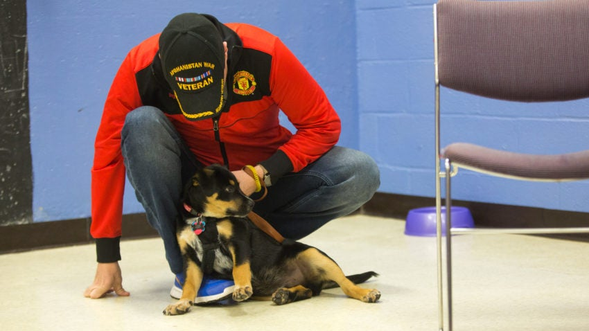 Mike Owen brought his puppy Gigsy for a training lesson with Coughlin. U.S. military veterans get discounts at Bark n' Roll.