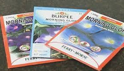 Police are warning parents about these seeds.