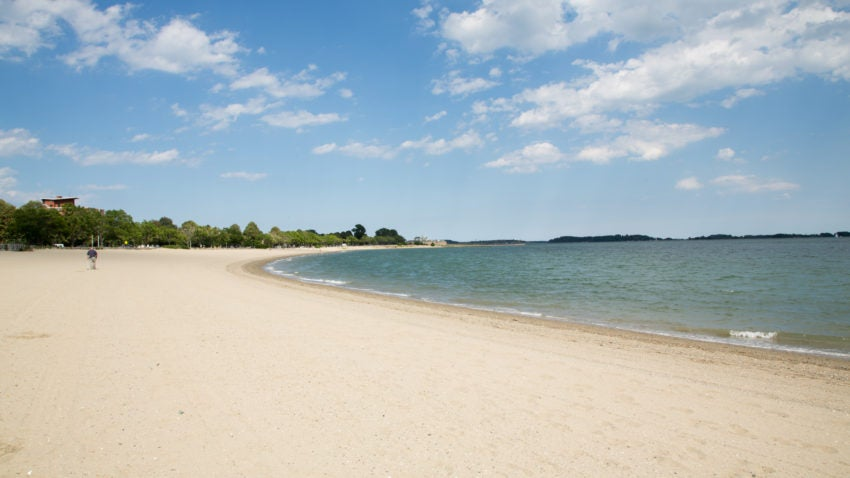 Water quality at beaches in metropolitan Boston is slightly improving