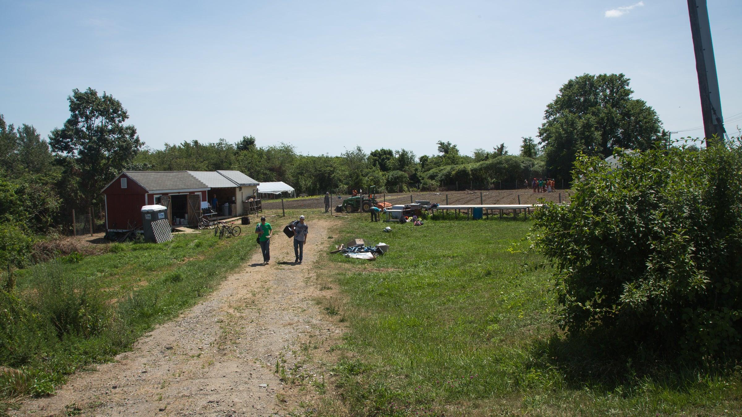 Hannah Farm