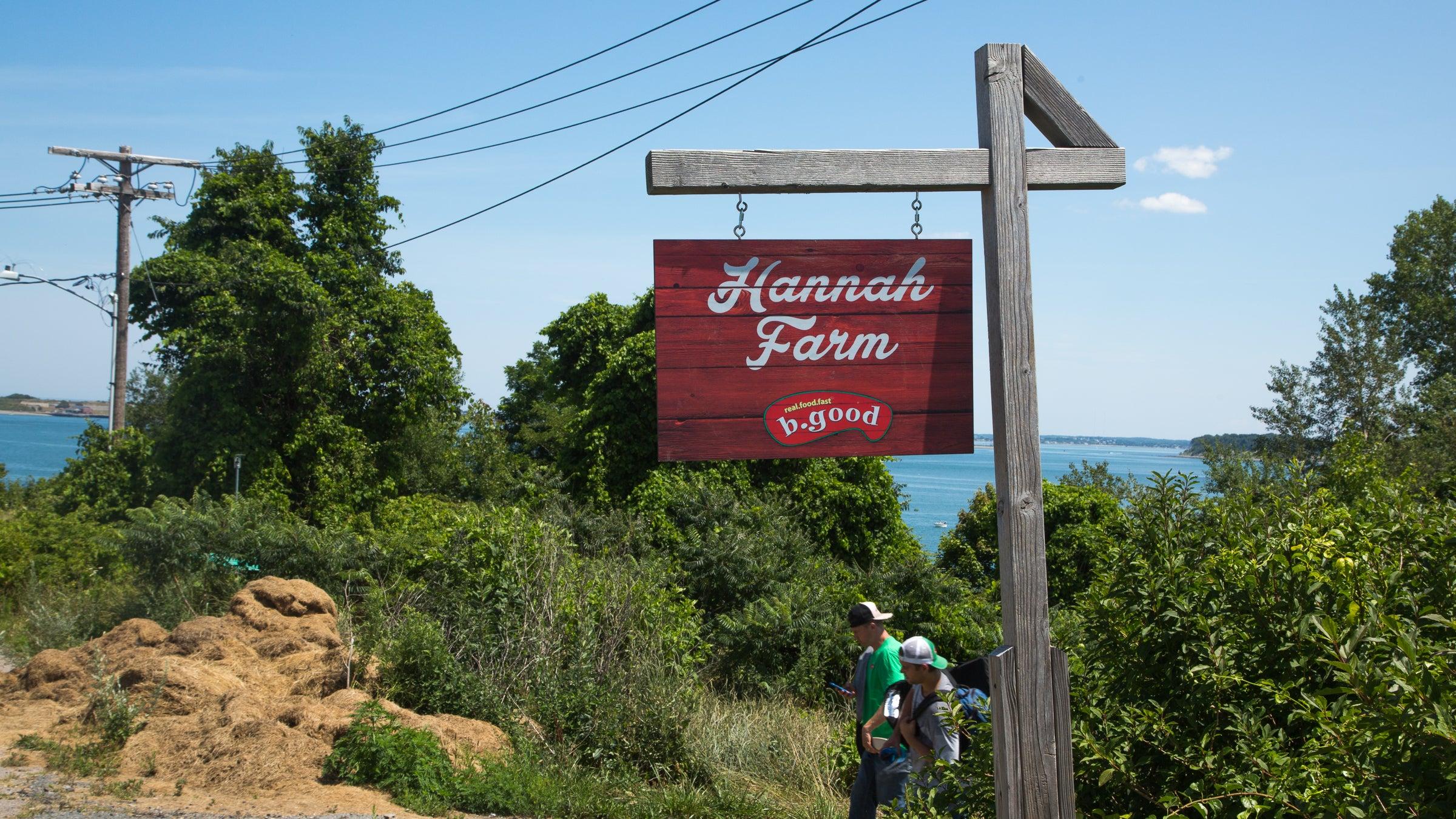 Hannah Farm on Long Island is run by b.good.
