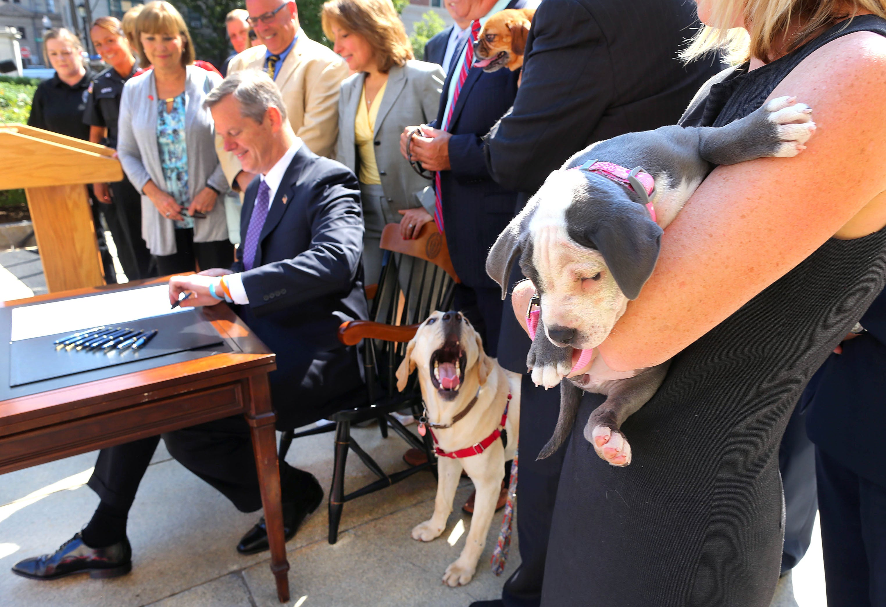Charlie Baker signs law that bans people from leaving pets