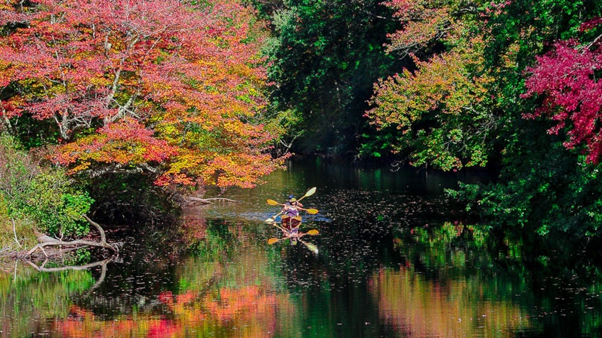 5 Places To See Fall Foliage In Rhode Island