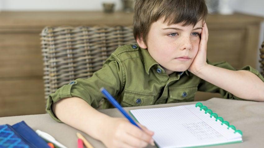 Homework banning