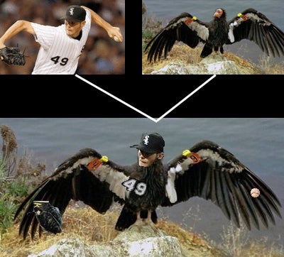 "A diagram showing why Chris Sale was nicknamed ""the Condor"" by White Sox fans."