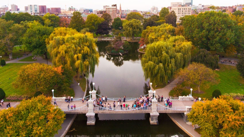 Look closely and you ll see a man down on one knee here s the story beyond the photo Boston public garden map