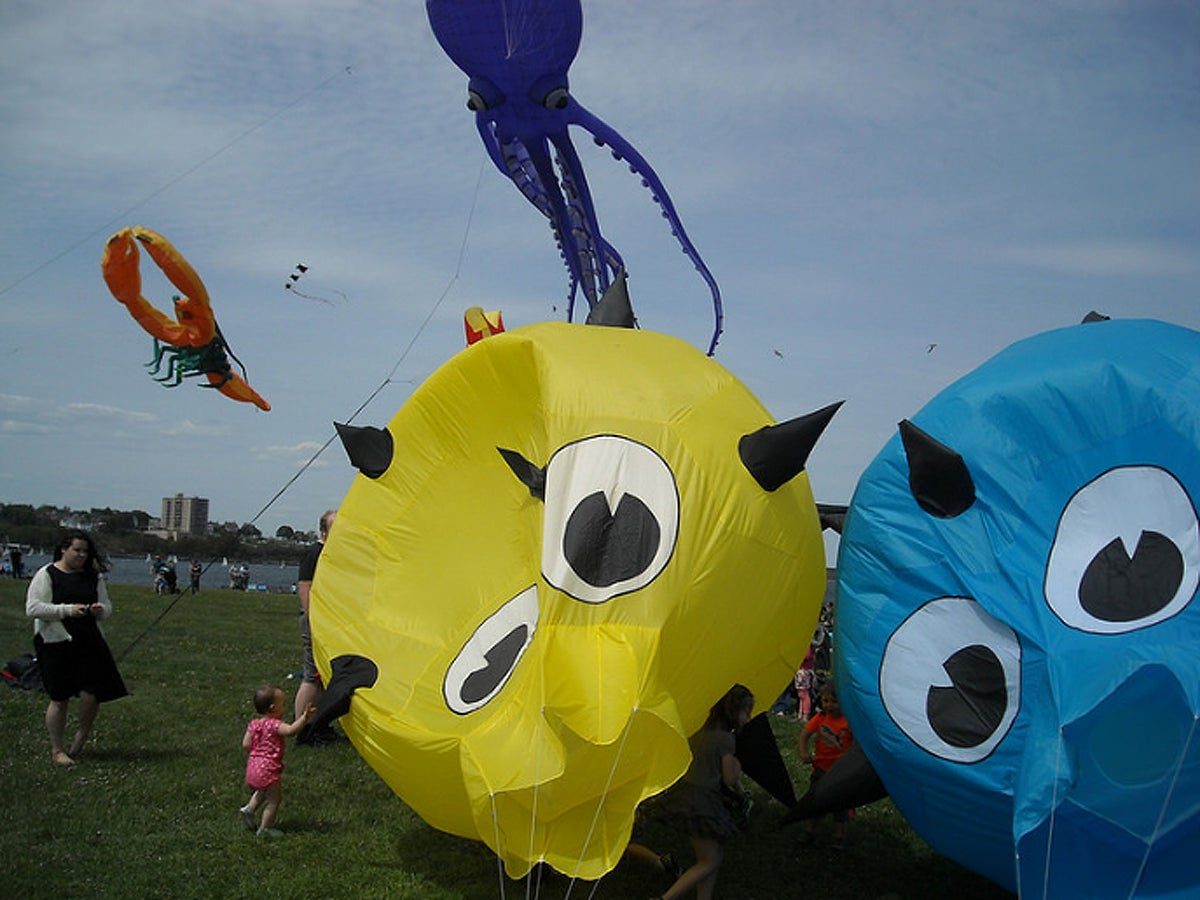 Kites at a previous Bug Light Kite Festival in Maine.