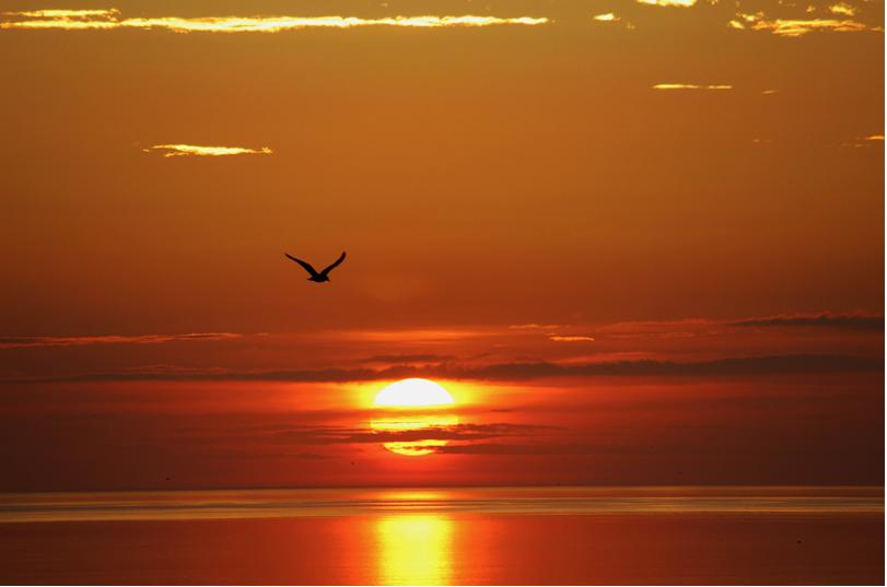 Sunset at Sandy Neck Beach, Barnstable