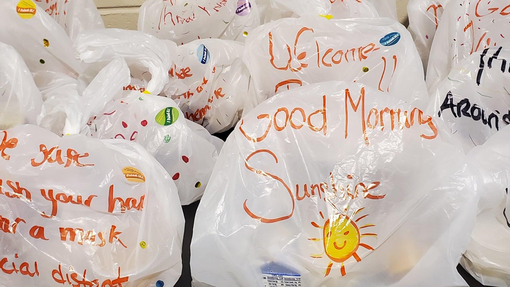 School meal bags